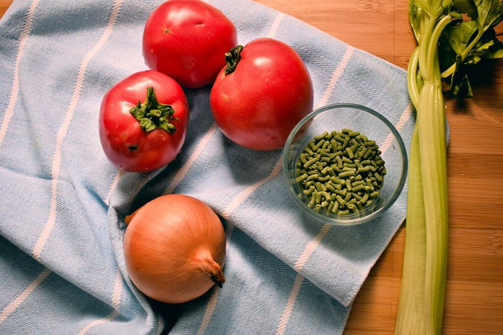 Ingredients to make Tomato and Celery Minestrone Soup